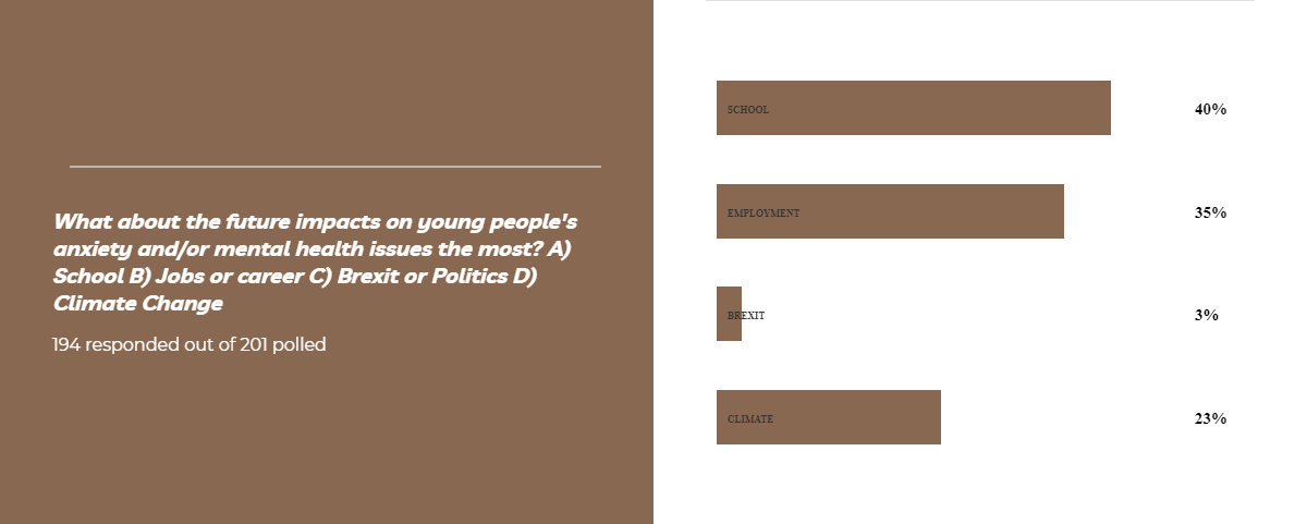 Brown poll on the future impacts on young people's anxiety