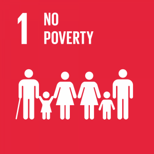 Target 1.3  Implement nationally appropriate social protection systems and measures for all.
